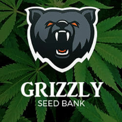 Grizzly Seed Bank Coupons