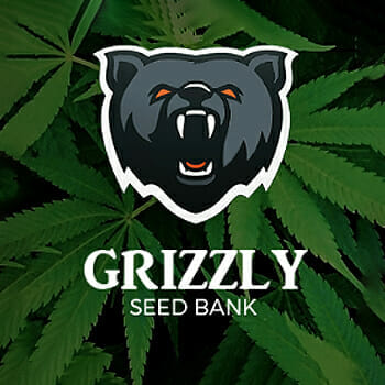 Grizzly Seed Bank