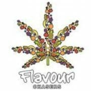 Flavor Chasers Logo
