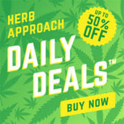Herb Approach Deal Of The Day Discount Code